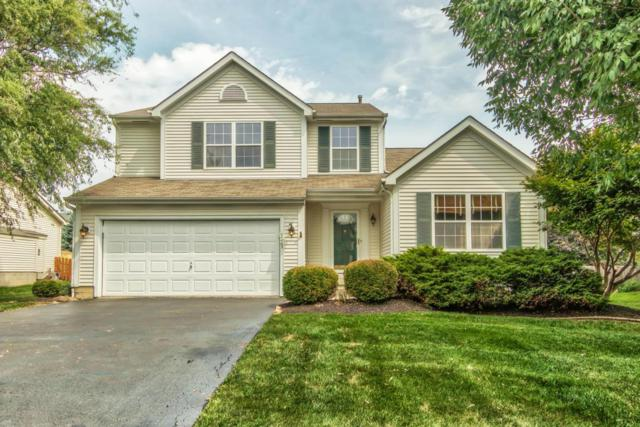 1341 Great Hunter Drive, Grove City, OH 43123 (MLS #218030568) :: Exp Realty