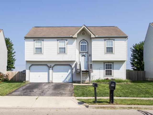 6328 Pritchard Drive, Galloway, OH 43119 (MLS #218030679) :: RE/MAX ONE