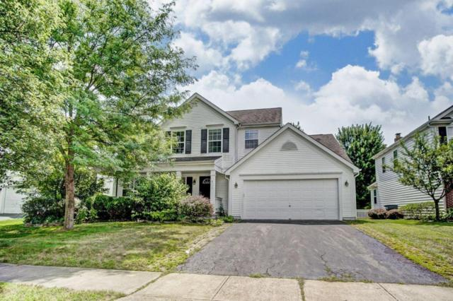 6111 Blaverly Drive, New Albany, OH 43054 (MLS #218030747) :: Signature Real Estate