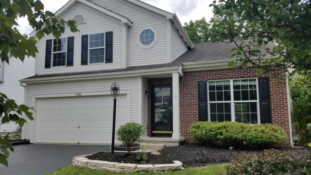 7993 Headwater Drive, Blacklick, OH 43004 (MLS #218030755) :: Berkshire Hathaway HomeServices Crager Tobin Real Estate