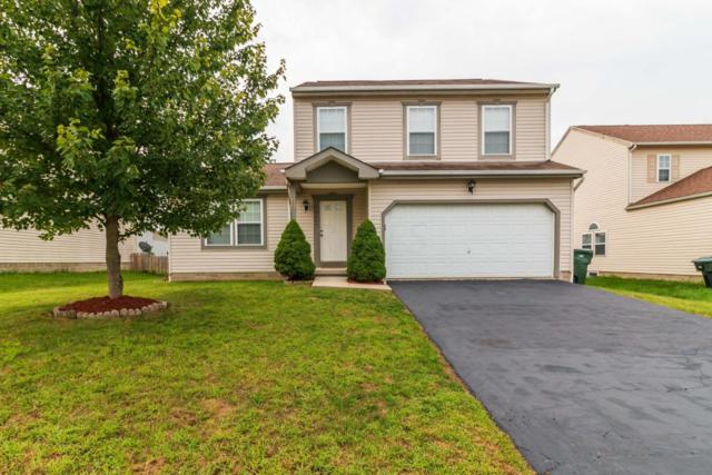 7667 Rippingale Street, Blacklick, OH 43004 (MLS #218030986) :: The Columbus Home Team