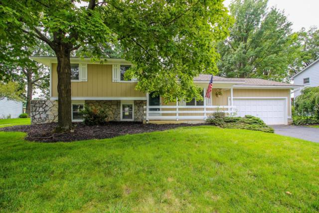 919 E College Avenue, Westerville, OH 43081 (MLS #218031069) :: Signature Real Estate