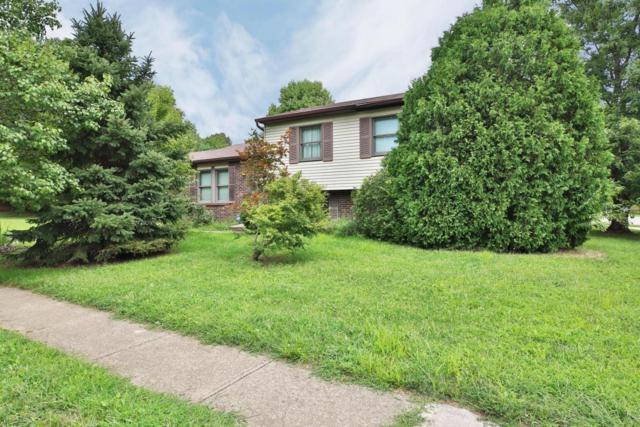 8270 Lariat Court, Powell, OH 43065 (MLS #218031105) :: Signature Real Estate