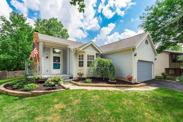 1660 Weather Stone Lane, Columbus, OH 43235 (MLS #218031144) :: Susanne Casey & Associates