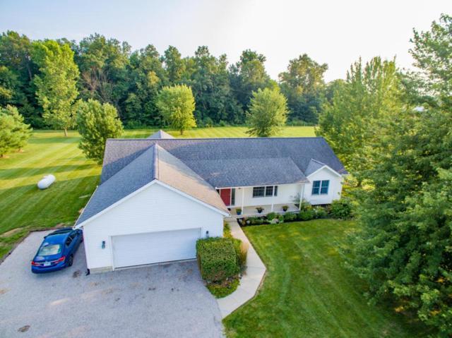 12183 Watkins Road, Marysville, OH 43040 (MLS #218031192) :: Signature Real Estate