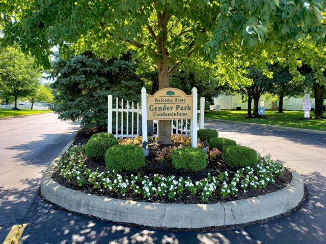 6688 Axtel Drive 3D, Canal Winchester, OH 43110 (MLS #218031242) :: Julie & Company