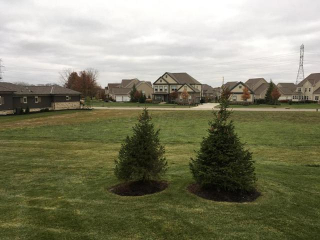 7035 Calabria Place, Dublin, OH 43016 (MLS #218031275) :: The Columbus Home Team