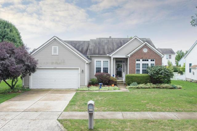 272 Lofton Circle, Delaware, OH 43015 (MLS #218031330) :: Signature Real Estate