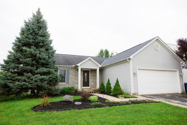 5903 Weston Woods Drive, Galloway, OH 43119 (MLS #218031381) :: The Mike Laemmle Team Realty