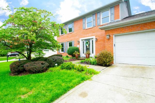 427 Rockbourne Drive, Westerville, OH 43082 (MLS #218031400) :: The Columbus Home Team