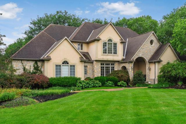 6810 Temperance Point Place, Westerville, OH 43082 (MLS #218031418) :: The Columbus Home Team
