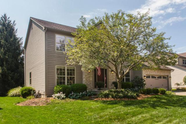 6105 Holywell Drive, Dublin, OH 43017 (MLS #218031446) :: The Columbus Home Team