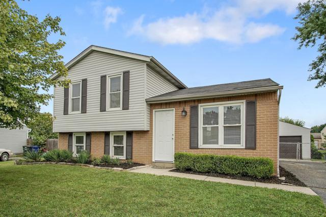 1606 Elm Creek Drive, Grove City, OH 43123 (MLS #218031718) :: RE/MAX ONE