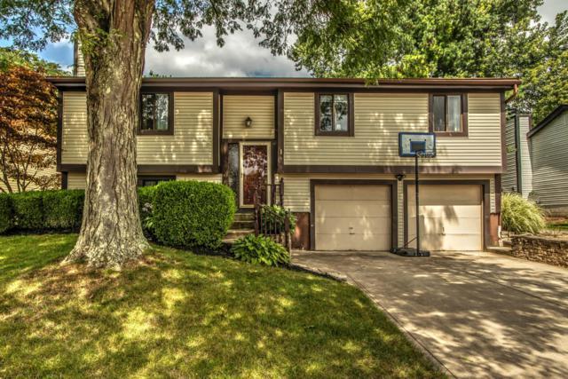 5224 Militia Lane, Columbus, OH 43230 (MLS #218032114) :: Signature Real Estate