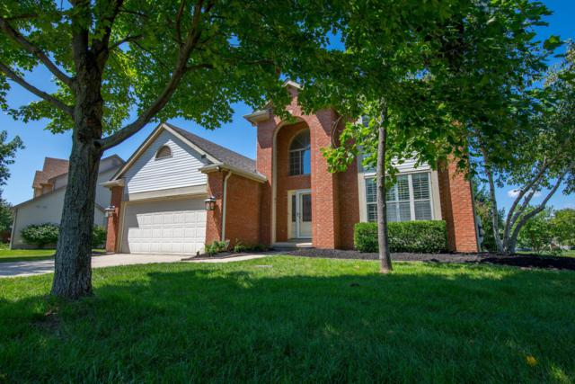 1805 Pinecone Court, Lewis Center, OH 43035 (MLS #218032223) :: Exp Realty