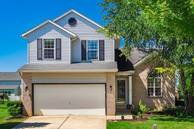 75 Glengary Drive, Delaware, OH 43015 (MLS #218032227) :: Signature Real Estate