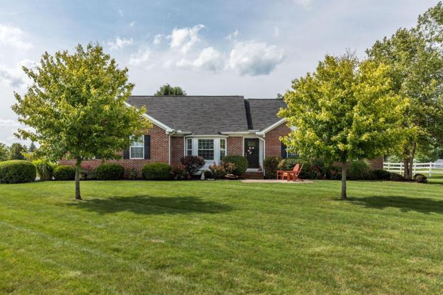3002 Grassy Bend Drive, Grove City, OH 43123 (MLS #218032403) :: RE/MAX ONE