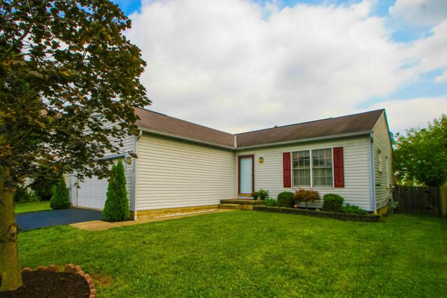 5532 Crenton Drive, Westerville, OH 43081 (MLS #218032450) :: Signature Real Estate