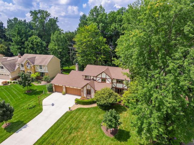 541 Hackberry Drive, Westerville, OH 43081 (MLS #218032695) :: Shannon Grimm & Partners