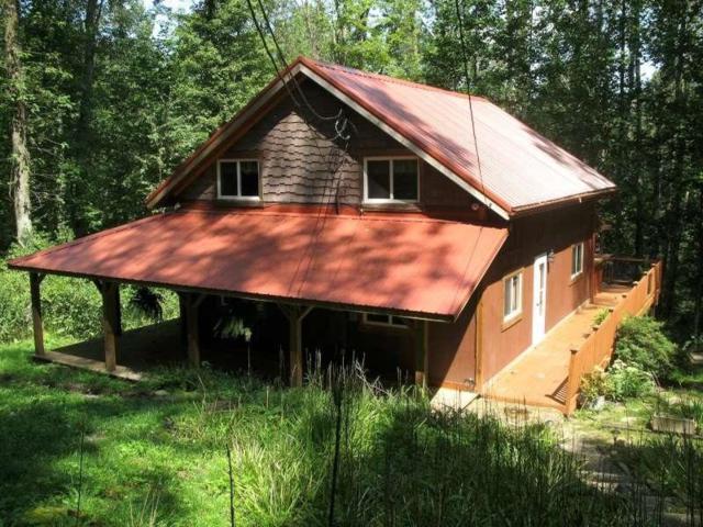 19124 Mayapple Lane, Rockbridge, OH 43149 (MLS #218032732) :: Shannon Grimm & Partners