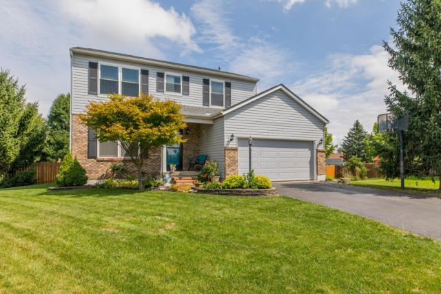3162 Stouenburgh Drive, Hilliard, OH 43026 (MLS #218033394) :: The Mike Laemmle Team Realty
