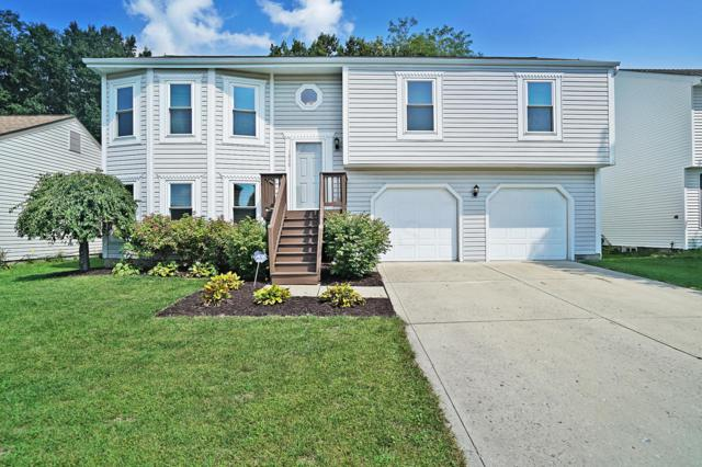 1898 Little Water Drive, Columbus, OH 43223 (MLS #218033514) :: RE/MAX ONE