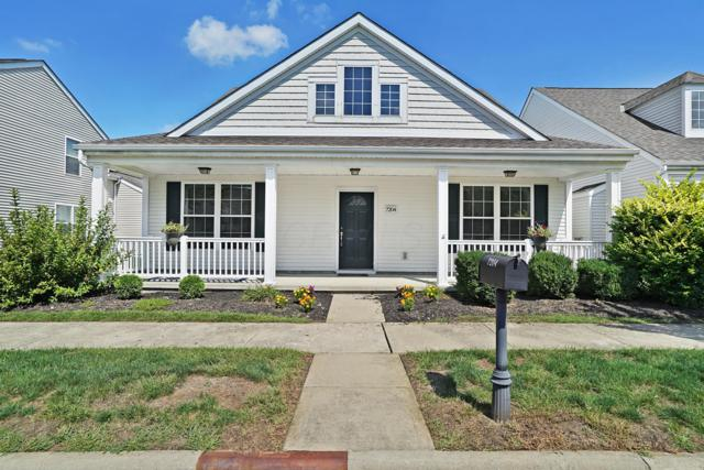 7204 Normanton Drive, New Albany, OH 43054 (MLS #218033638) :: RE/MAX ONE