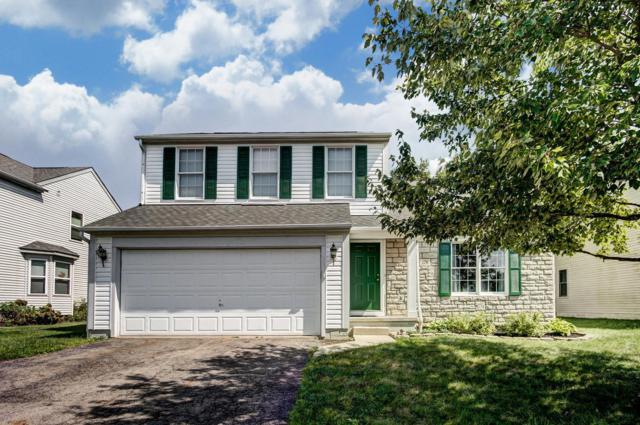 1176 Tannic Street, Blacklick, OH 43004 (MLS #218033680) :: The Mike Laemmle Team Realty