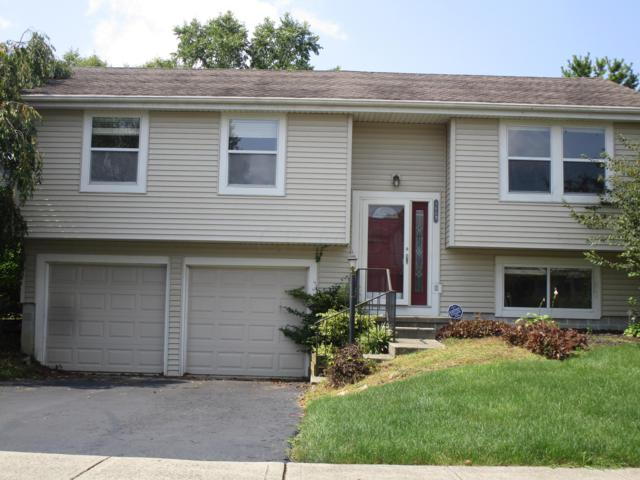 1603 Fallhaven Drive, Columbus, OH 43235 (MLS #218033697) :: Shannon Grimm & Partners