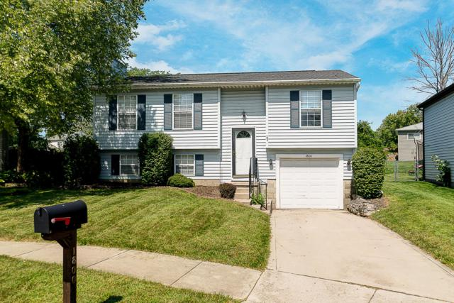 1800 Lone Prairie Drive, Powell, OH 43065 (MLS #218033721) :: RE/MAX ONE