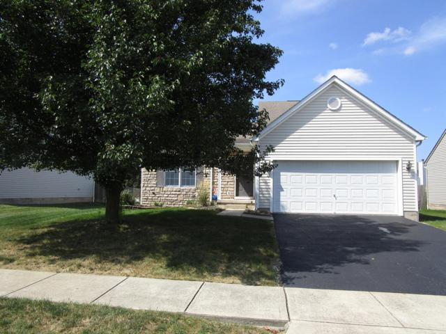 1028 Nutmeg Drive, Marysville, OH 43040 (MLS #218033763) :: The Mike Laemmle Team Realty
