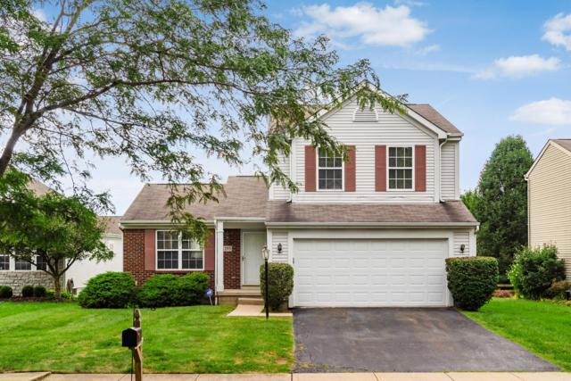 293 Streamwater Court, Blacklick, OH 43004 (MLS #218033773) :: Signature Real Estate