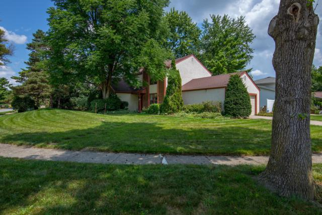1112 Firth Avenue, Worthington, OH 43085 (MLS #218033828) :: Exp Realty