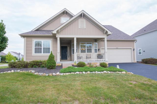 1518 Fairway Drive, Grove City, OH 43123 (MLS #218033921) :: CARLETON REALTY