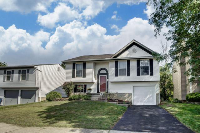 6924 Finchley Drive, Reynoldsburg, OH 43068 (MLS #218033924) :: RE/MAX ONE