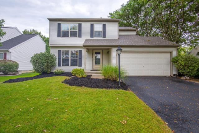 3562 Vintage Woods Drive, Hilliard, OH 43026 (MLS #218033980) :: The Mike Laemmle Team Realty
