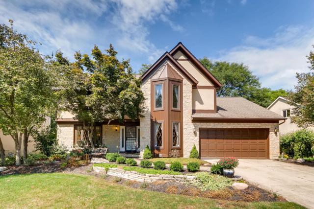 7770 Pembrook Drive, Reynoldsburg, OH 43068 (MLS #218034028) :: Shannon Grimm & Partners