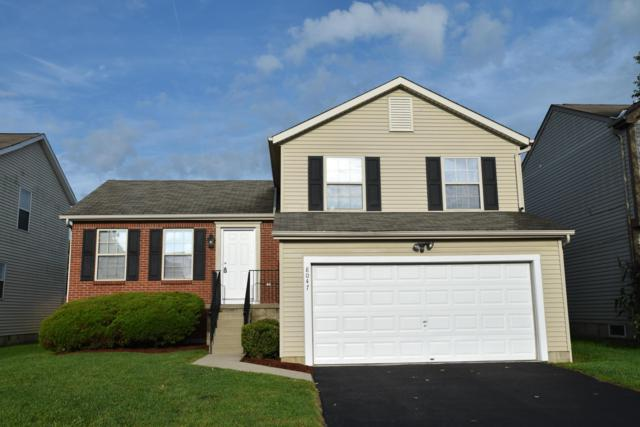 8047 Crete Lane, Blacklick, OH 43004 (MLS #218034030) :: Exp Realty