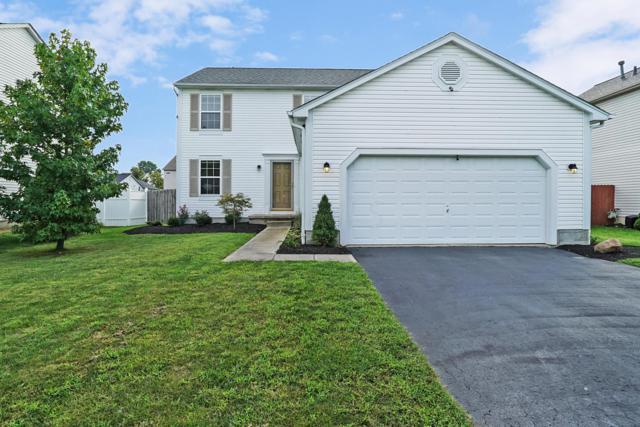 1869 Ashburn Drive, Delaware, OH 43015 (MLS #218034168) :: Signature Real Estate