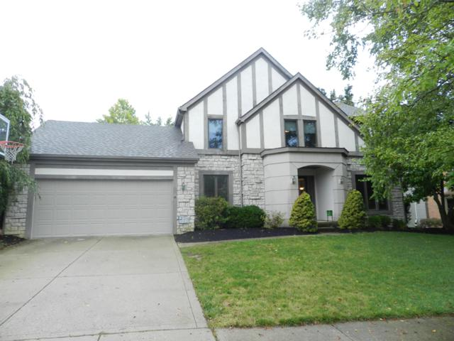 192 Mccreary Court, Powell, OH 43065 (MLS #218034261) :: Susanne Casey & Associates