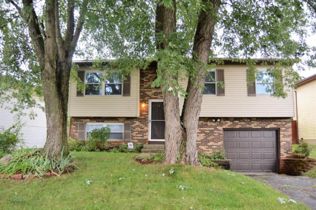 6808 Centennial Drive, Reynoldsburg, OH 43068 (MLS #218034344) :: RE/MAX ONE