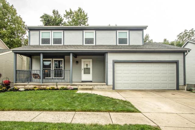 4509 Big Walnutview Drive, Gahanna, OH 43230 (MLS #218034381) :: Shannon Grimm & Partners