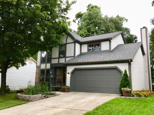 5650 Beaver Head Court, Gahanna, OH 43230 (MLS #218034483) :: The Clark Group @ ERA Real Solutions Realty