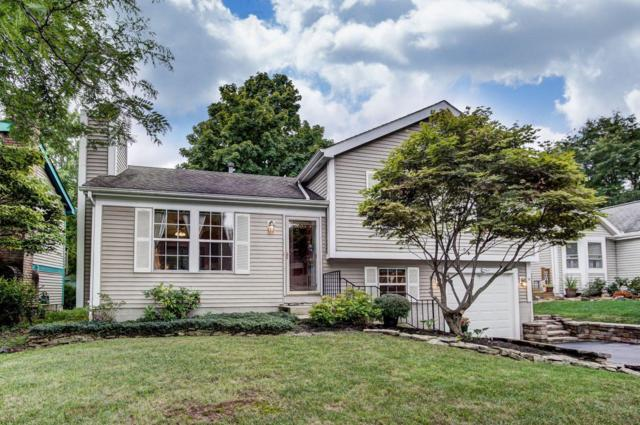 1807 Gardenstone Drive, Columbus, OH 43235 (MLS #218034534) :: The Mike Laemmle Team Realty