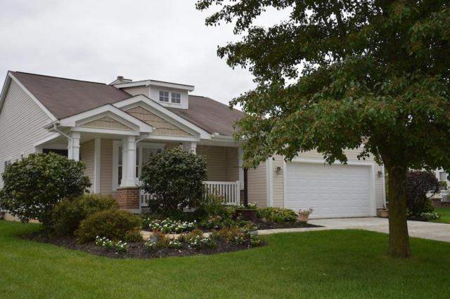 169 Stone Hedge Row Drive, Johnstown, OH 43031 (MLS #218034536) :: The Clark Group @ ERA Real Solutions Realty