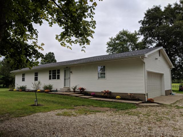 2710 Mink Street, Johnstown, OH 43031 (MLS #218034553) :: The Clark Group @ ERA Real Solutions Realty