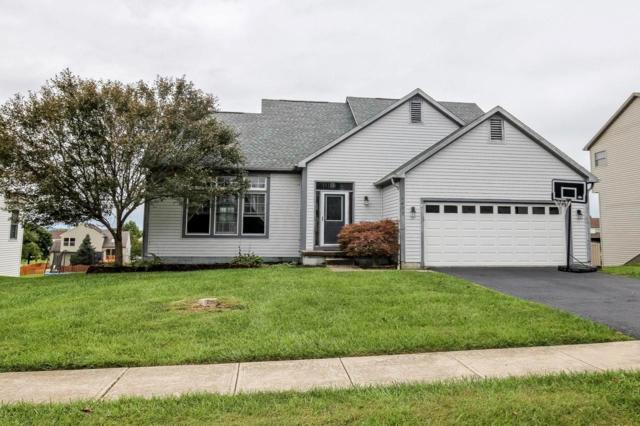 1657 Cloverdale Drive, Lancaster, OH 43130 (MLS #218034572) :: RE/MAX ONE