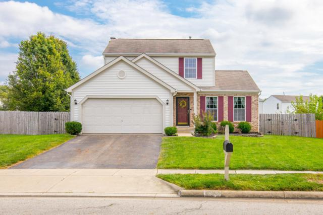 8325 Squad Drive, Galloway, OH 43119 (MLS #218034577) :: Susanne Casey & Associates