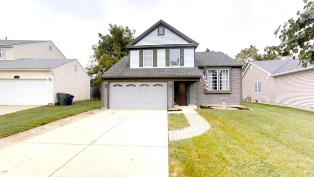1244 Eagle View Drive, Columbus, OH 43228 (MLS #218034662) :: Susanne Casey & Associates