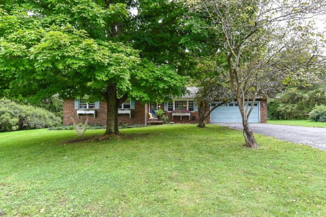 6166 Douglas Drive, Canal Winchester, OH 43110 (MLS #218034720) :: RE/MAX ONE